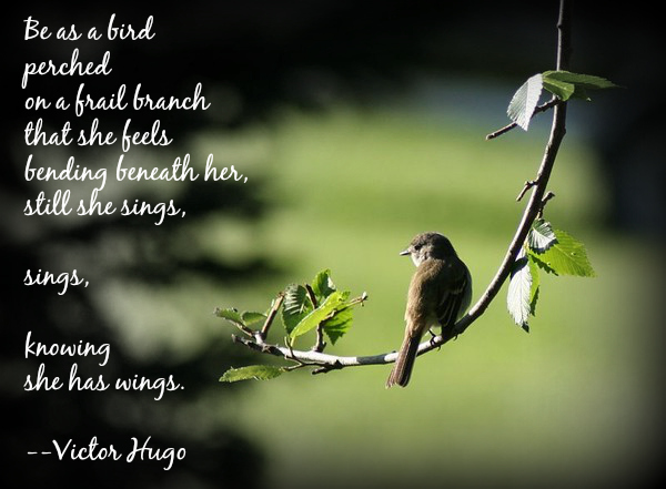be as a bird victor hugo