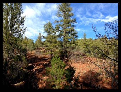 red dirt and junipers
